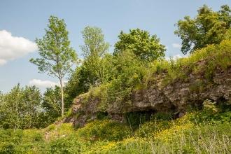 Остатки стены тевтонского замка Грос Вонсдорф. Калининградская область