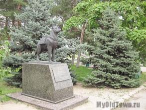 Памятник собакам - истребителям танков в Волгограде. Фото