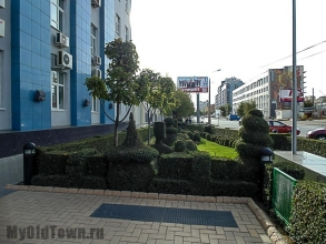 Сквер на Коммунистической. Осень. Фото Волгограда