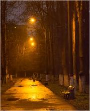 Мокрая аллея. Вечернее фото Автозаводского парка. Нижний Новгород