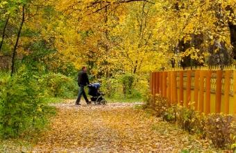 Осенняя прогулка в Автозаводском парке. Папа с коляской. Фото