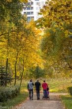 Прогулка в Автозаводском парке. Фото 2014 г.
