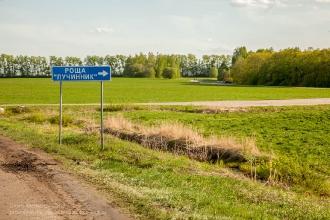 Дорога от Болдино во Львовку. Поворот к роще Лучинник