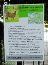 Свято-Духов монастырь. Волгоград