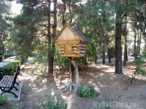 Санаторий Волгоград. Природа и фантазия. Фото Волгограда