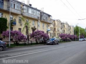 Улица Мира. Фото Волгограда