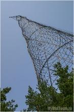 Башня Шухова по сравнению со взрослыми деревьями. Фото