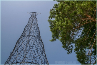 Башня Шухова и высокая сосна. Фото