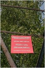 Фотографии Башни Шухова. Памятник инженерного искусства