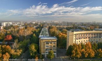 Осень на проспекте Молодежном. Нижний Новгород. Фото