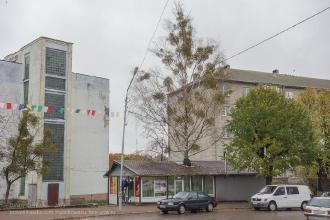 Улица Багратиона у Городской площади. Дерево, растущее сквозь крышу